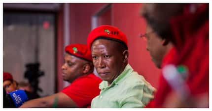 Malema's defence asks court not to jail the EFF leader for free speech