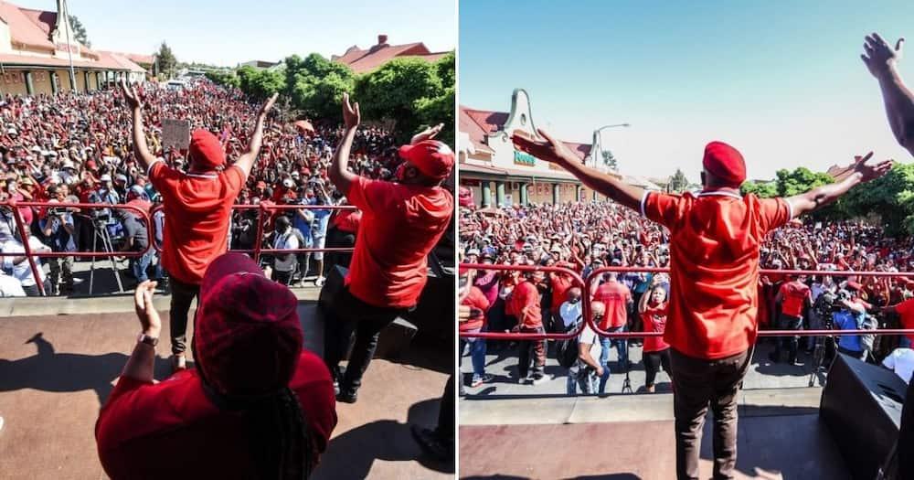 Julius Malema arrives in Senekal, EFF throw rocks at farmers
