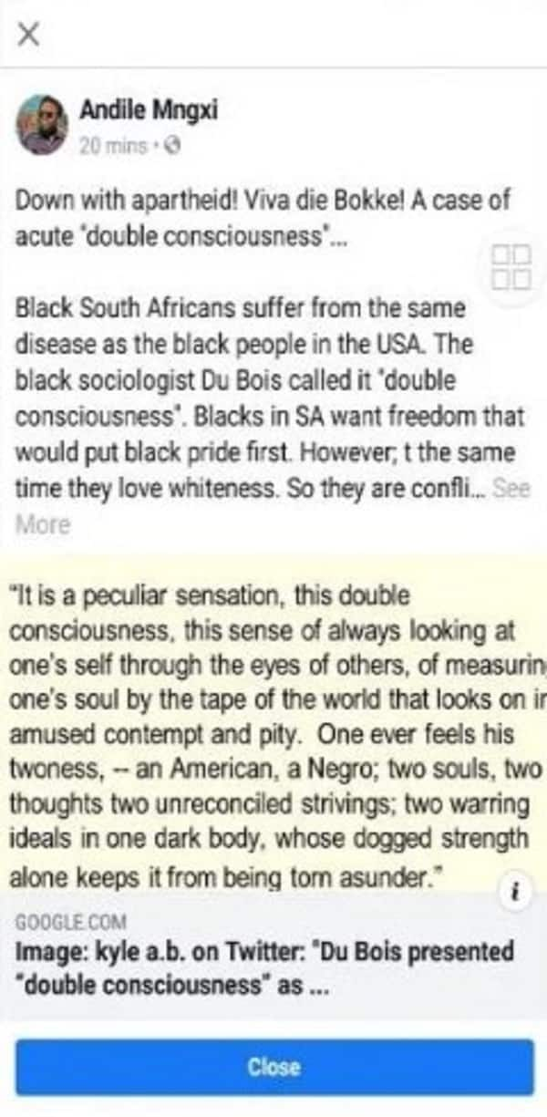BLF leader Andile Mngxitama banned from Facebook for 'racism' quote