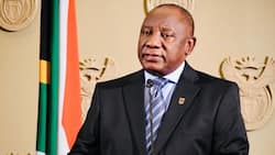 Ramaphosa's talk of 'vaccine passports' leaves nation in a lacklustre state