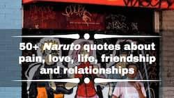 50+ Naruto quotes about pain, love, life, friendship and relationships