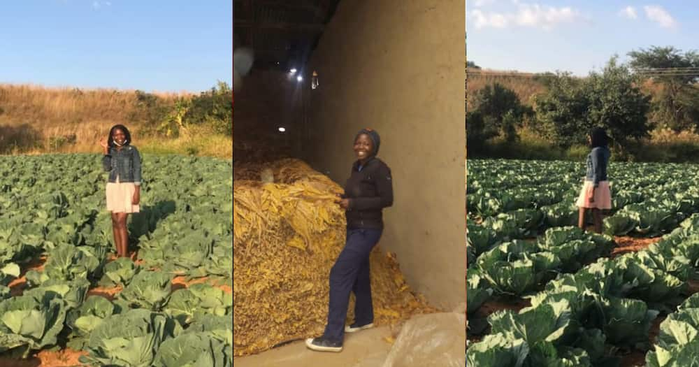 Graduate ventures into farming, setting an example for other women