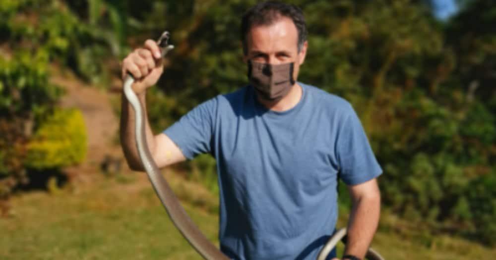 Black Mamba, Female, Nick Evans, Durban, KwaZulu-Natal, Facebook, Homeowner, Garden, Gardner, Snake, Snake handler