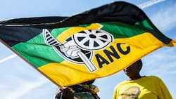 ANC supports families of 1982 Cosas apartheid-era murdered victims at Johannesburg High Court