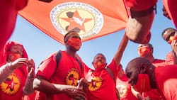 Numsa Goes on Large Scale National Protected Strike, Declares War Against Employers