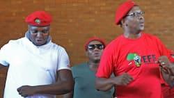 Dali Mpofu: Floyd Shivambu slams critics, brings Cyril Ramaphosa up