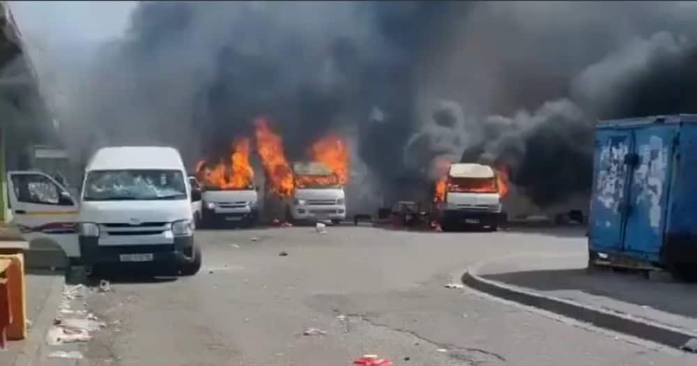 taxi violence, Gqeberha, Eastern Cape, car accident, foreign nationals