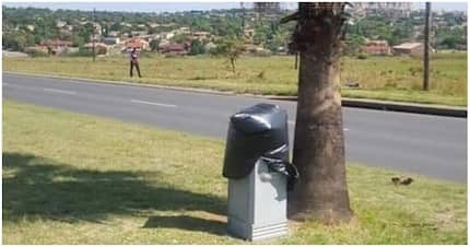 Pic of blocked speed camera in Witbank leaves tweeps in stitches
