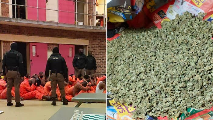 Prison raid unearths traditional meds, cellphones and dagga worth R12 000