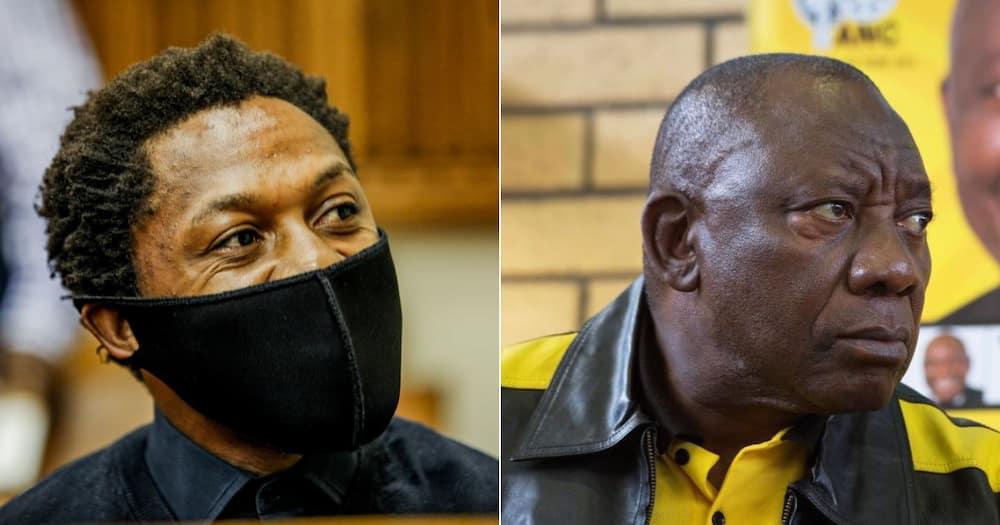 Ndlozi, Ramaphosa, Shade, Fires shots, Twitter reactions, Mzansi in stitches