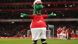 Arsenal sacks mascot after 27 years due to Covid-19 economic crisis