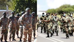 Zuma protests: Army won't be called in response to violence sweeping KZN