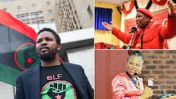 BLF: Mkhwebane was facing the chop in Parliament, where was the EFF?
