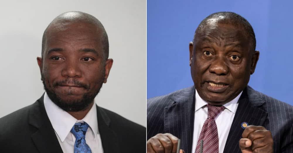 Mmusi Maimane, Cyril Ramaphosa, Shirt, Stolen, Style, Social media reactions