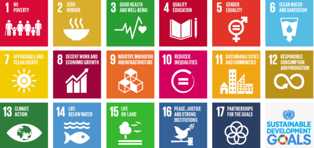 Briefly News Becomes UN Sustainable Development Goals Media Compact Member