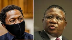 Lol: Ndlozi shares photoshopped pic of Mbalula in a bath towel, SA in stitches