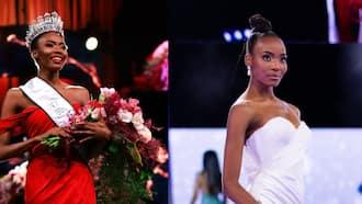 Halala: Mzansi celebrates Lalela Mswane being crowned Miss SA