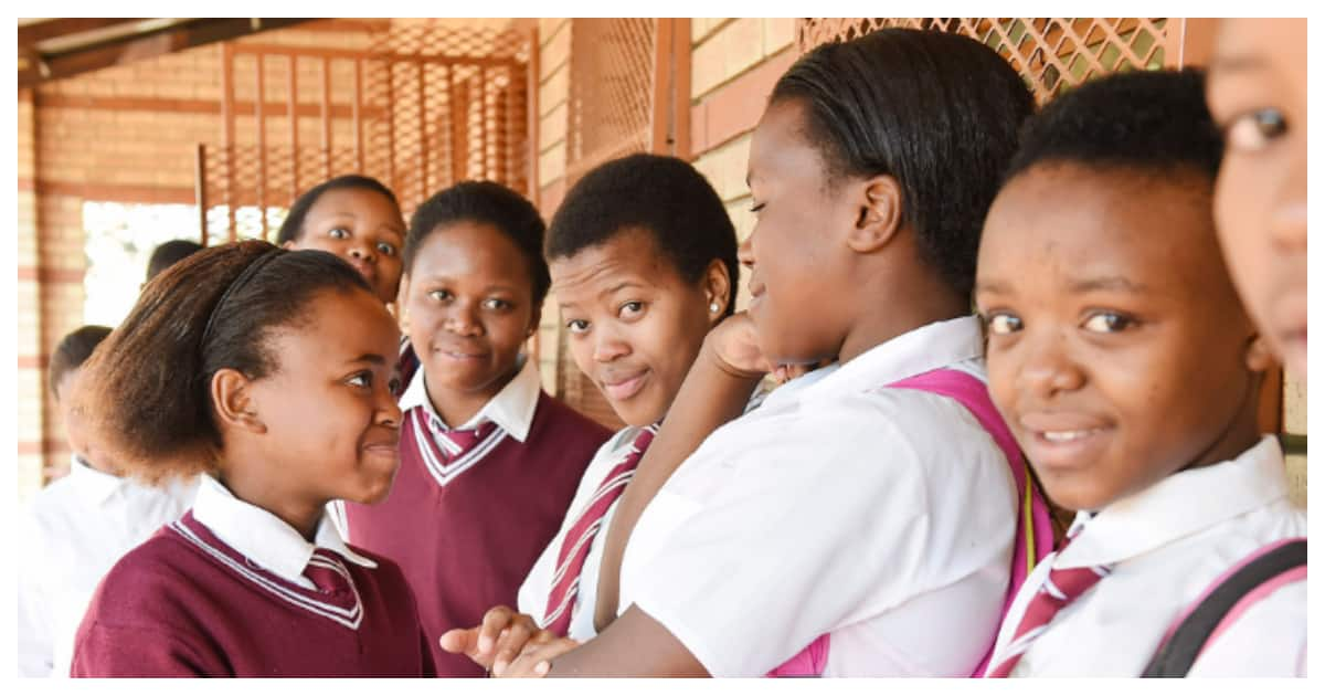 advantages and disadvantages of free basic education in south africa