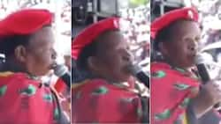 """""""Viva ANC"""": Mzansi laughs at EFF member who hasn't gotten over """"the ex"""""""