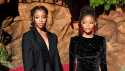Are Chloe and Halle still together? 8 interesting facts about Boyence's protégé's