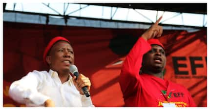 Floyd Shivambu confident that incitement charges against Malema will be dropped