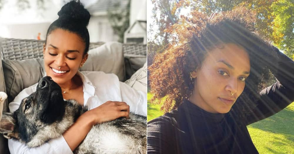 Pearl Thusi, government, corruption, pandemic, disappointed