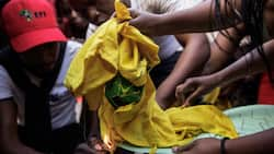 ANC KZN opens assault cases after clashes with EFF members during voter registrations
