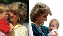 Diana's sister-in-law says princess would have been proud of Harry: #Megxit