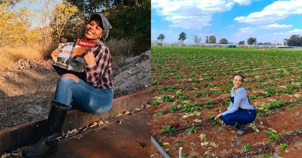 Stunning female Ndebele farmer inspires Mzansi