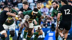Springboks lose historic 100th test match against New Zealand