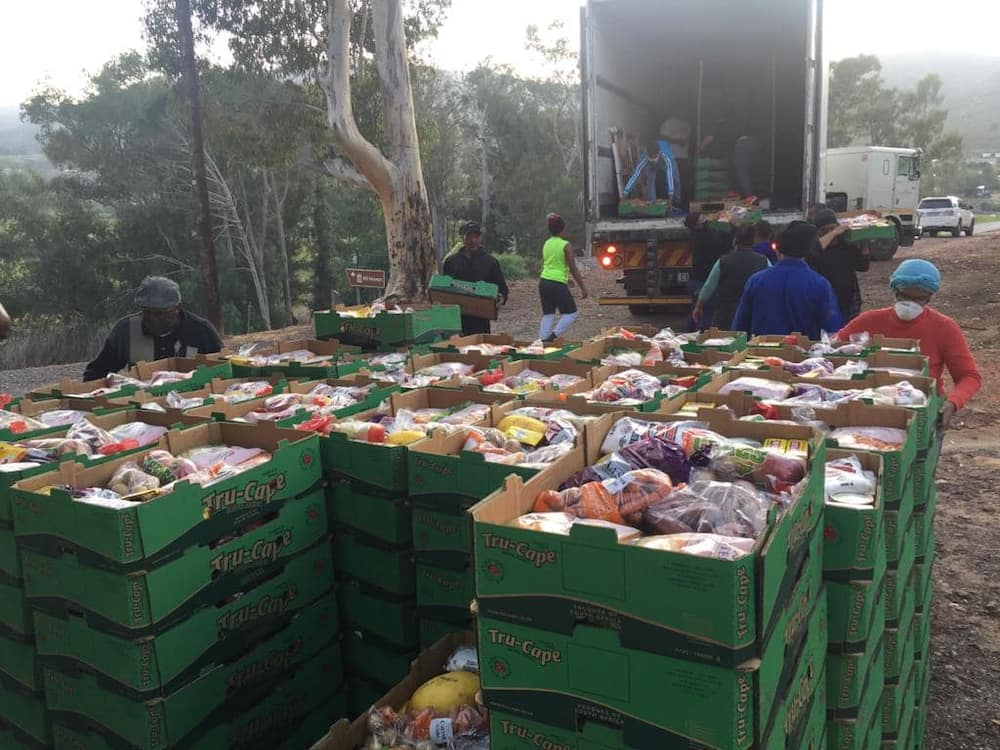 Farmers make huge donation of fruit and veggies to the community