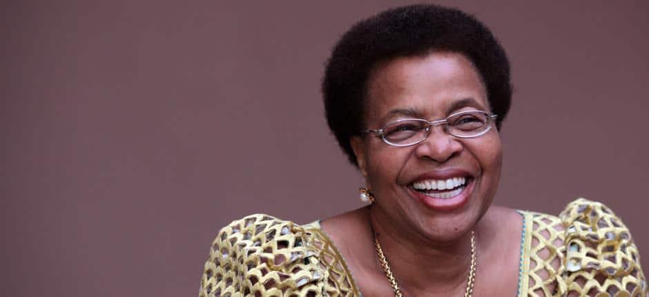 south african role models  south african role models role models in south africa