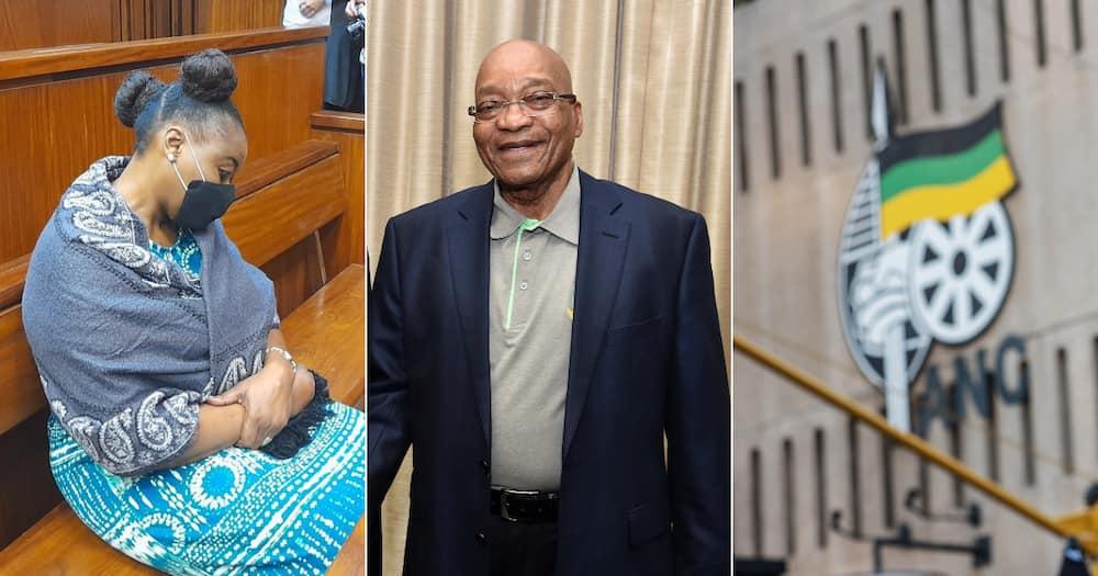 Nomia Rosemary Ndlovu, Jacob Zuma, Nkandla, African National Congress, DA, EFF