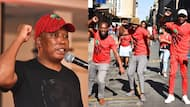 Free water and electricity: Malema promises to use wealth tax to help the poor