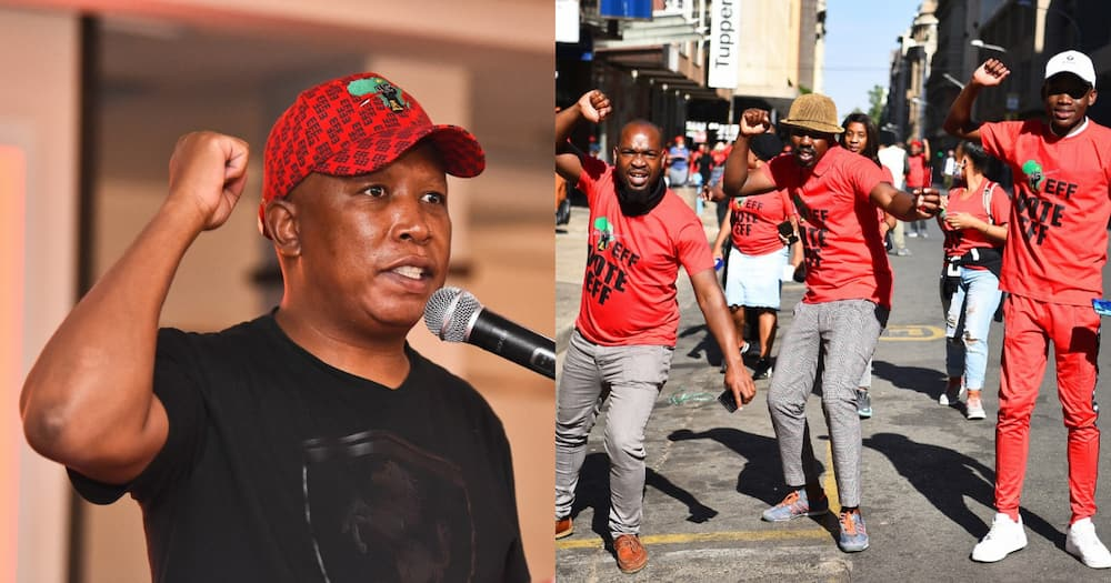 Free water and electricity, Malema, promises, poor, EFF, elections