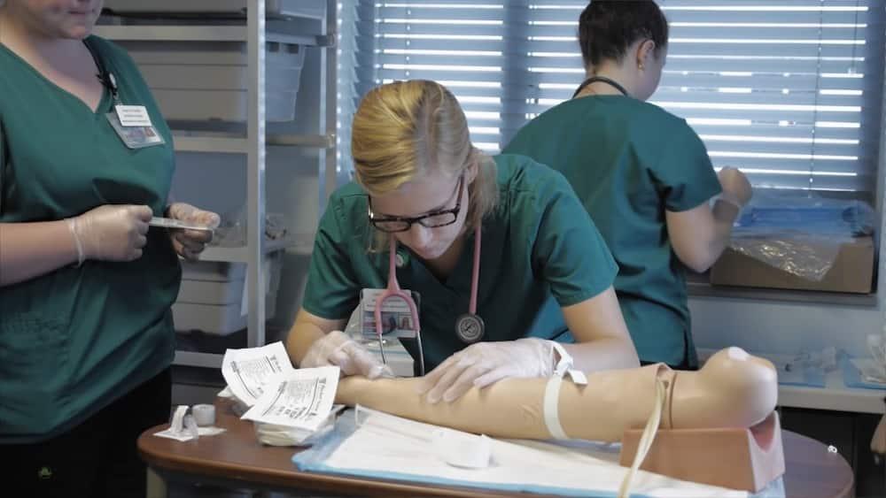 Nursing intake 2020