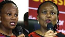 Busisiwe Mkhwebane: CASAC & Corruption Watch make their cases in court