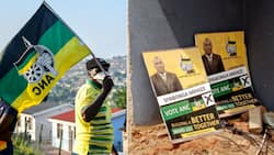 ANC ward candidate gunned down while campaigning door-to-door in KZN