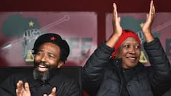 """""""Cars and houses for votes"""": EFF gains support from AbaThembu King after promise of a Mercedes Benz"""