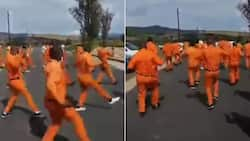 Jerusalema Challenge: SA reacts to inmates participating in movement