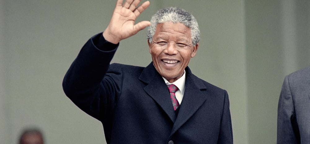 south africans wikipedia south africa south africa's south african famous people