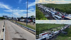 Beitbridge border chaos: 4 More fatalities as experts slam state