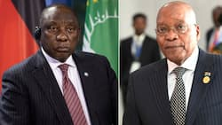 """""""True Definition of Loyalty"""": Zuma declares his support for ANC, peeps weigh in"""