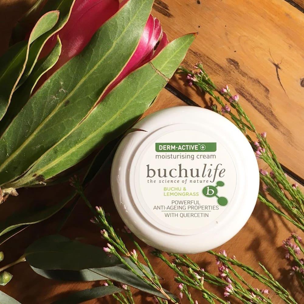 buchu benefits