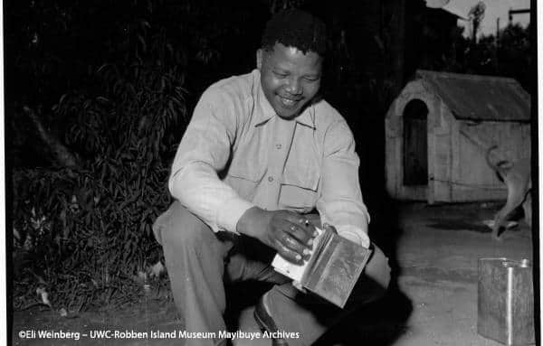 Celebrating Mandela's legacy on the 6th anniversary of his death