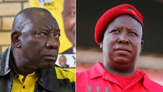 """Julius Malema slams ANC's timing of R350 grant: """"Another food parcel programme"""""""
