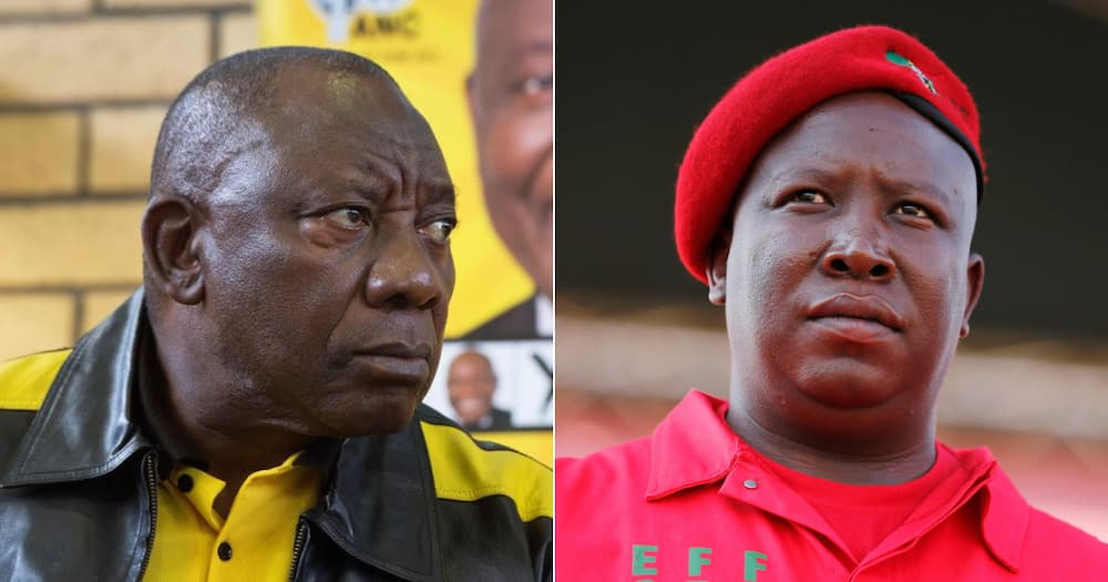 Julius Malema, Cyril Ramaphosa, President, EFF, Economic Freedom Fighters, ANC, Grant, Social relief of distress, Party, Celebrations