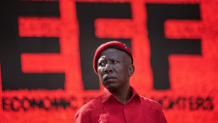 Police to lay criminal charges against organisers of EFF protest in Tshwane on Friday over vaccines