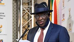 152 Firearms seized from security companies in investigation of Phoenix massacre, says Bheki Cele