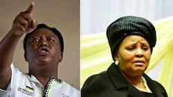"Video: Malema reacts to Defence Minister Mapisa-Nqakula's about-turn: ""Shem"""